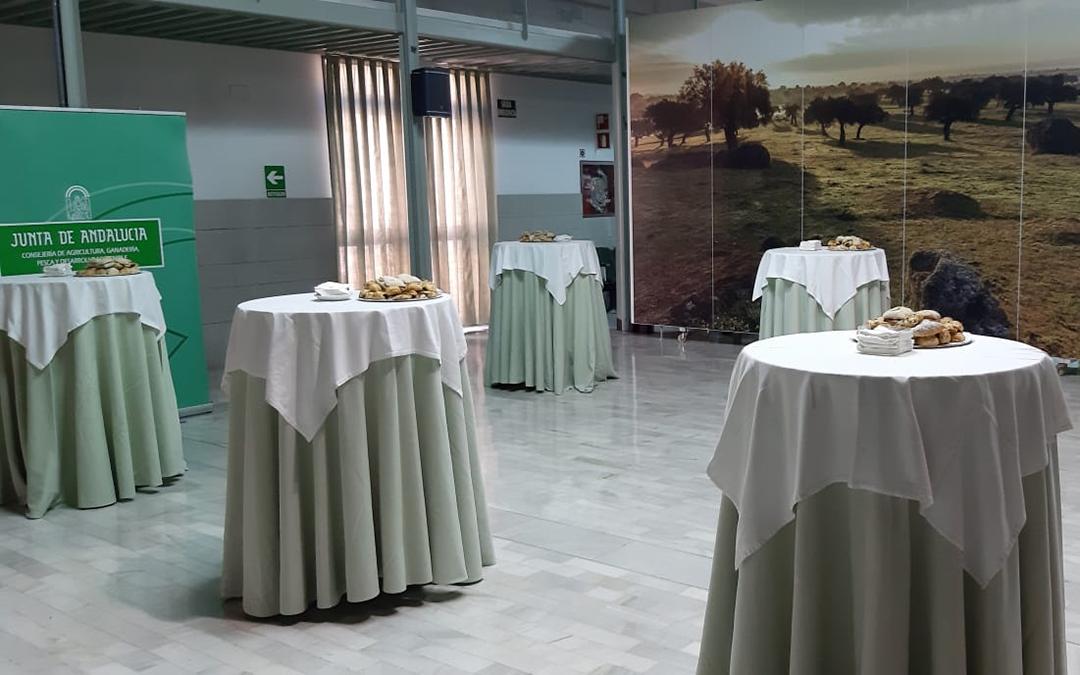 Catering para organismos oficiales