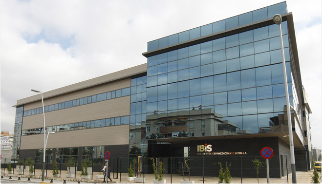 Instituto de Biomedicina de Sevilla, un ejemplo de solidaridad